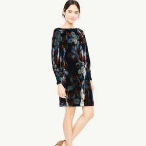 Ann Taylor Blue Floral Velvet Shift Dress Sz 10